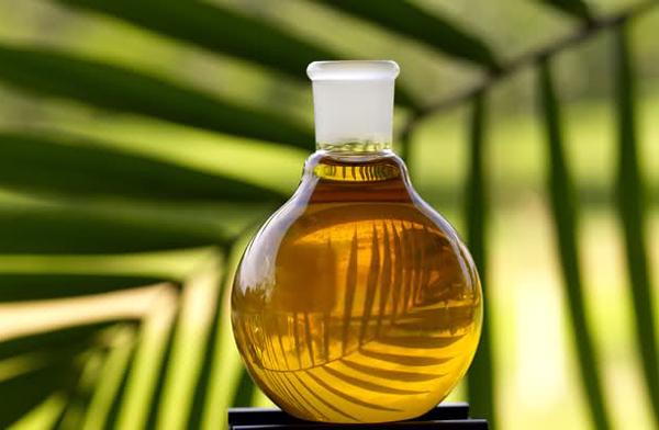 Польза пальмового масла для организма