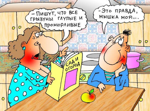 myshka-1