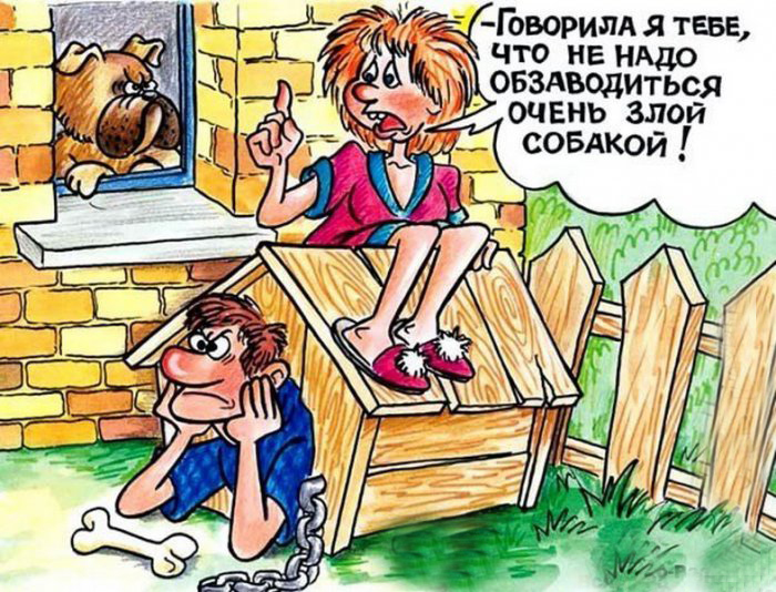 karikatury-4