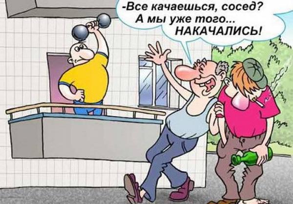 katok-14