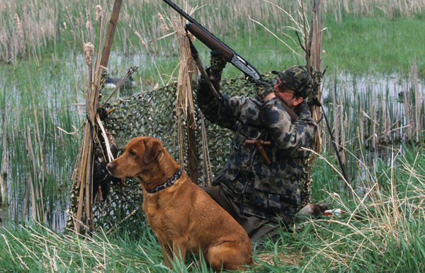 ВТатарстане сезон весенней охоты начнется 22апреля