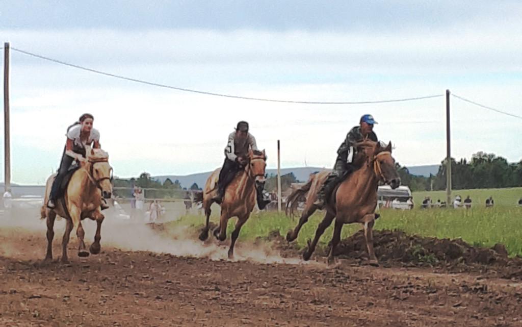 Самое зрелищное событие Сабантуя – скачки на лошадях татарской породы.