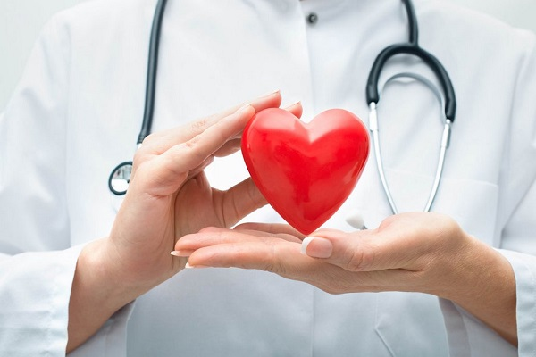 сердечно-сосудистая система 1