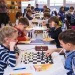 novosib-sport.ru_