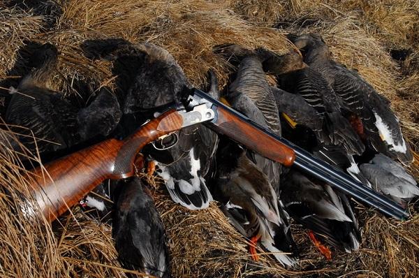 В Татарстане идет охота на уток и браконьеров, Новости Татарстана и Казани