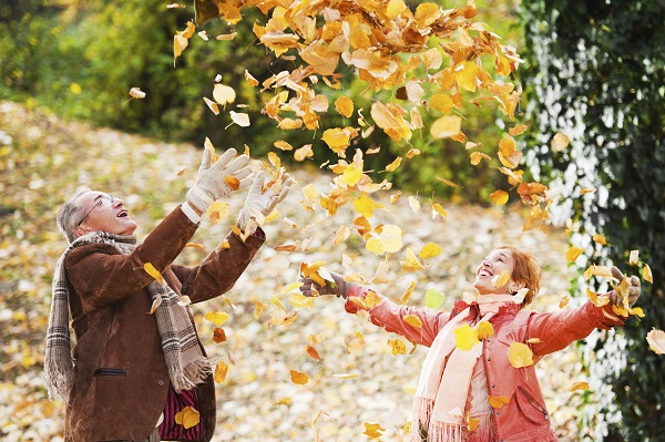 Senior couple is throwing leaves and enjoying in the autumn.   [url=http://www.istockphoto.com/search/lightbox/9786786][img]http://dl.dropbox.com/u/40117171/couples.jpg[/img][/url]