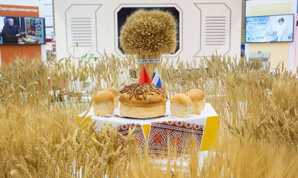 экспозиция Татарстана на выставке «Золотая осень»