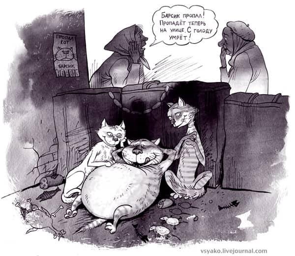 карикатура кот