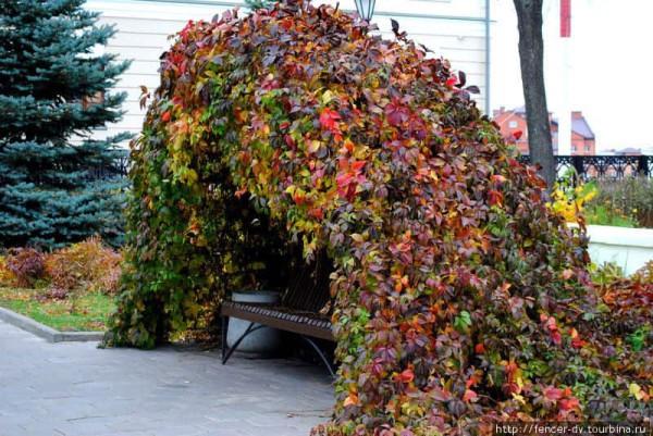 казань-осень