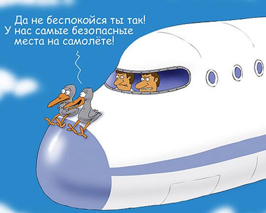 карикатура-безопасные-места-в-самолете