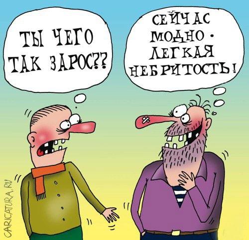 карикатура борода