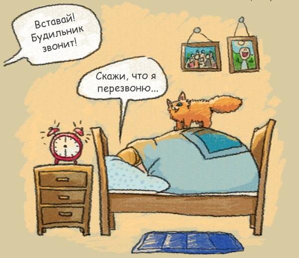 карикатура хочется спать