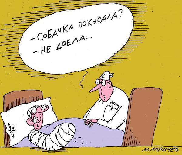 карикатура-собачка