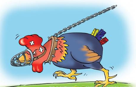 карикатура-петух