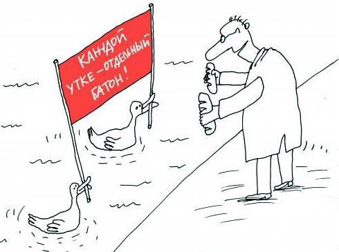 карикатура-утки