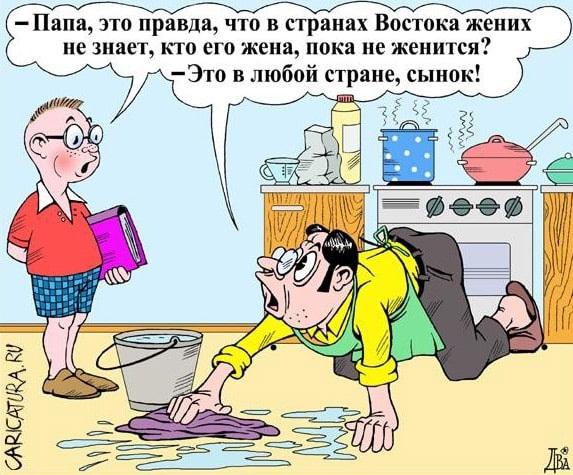 карикатура жена