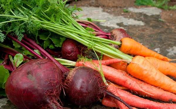 морковь-свекла