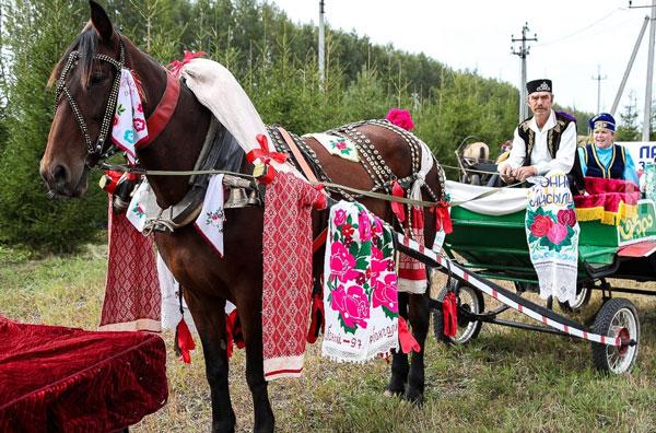 день-коня
