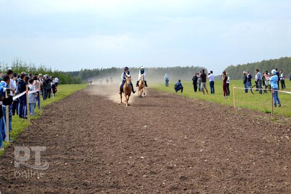 день-коня2