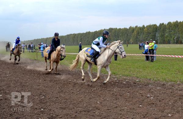 Скачки-лошадей-татарской-породы