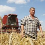 день-работников-сельского-хозяйства