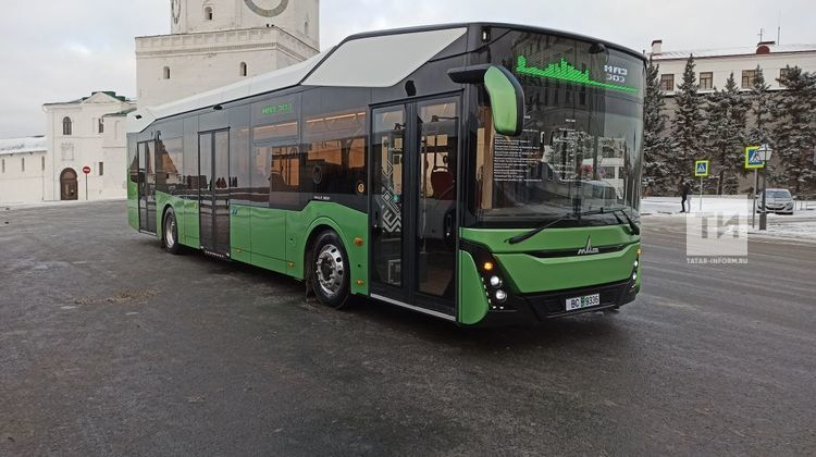маз303
