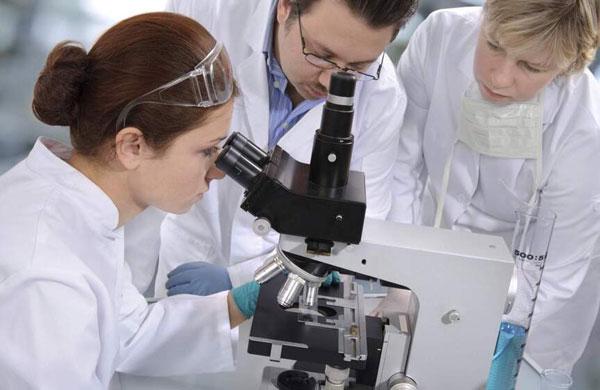 ученые