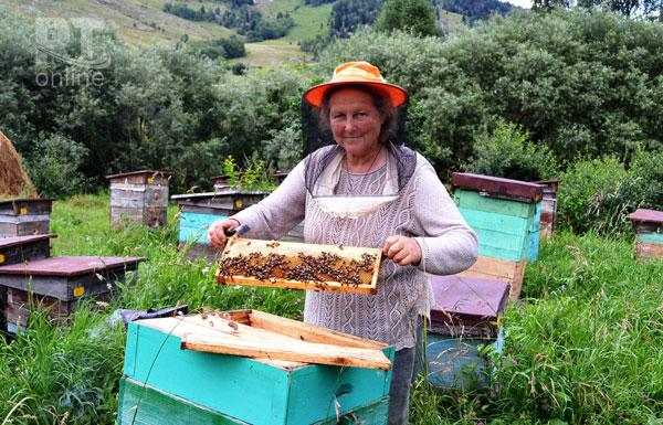 Форум-пчеловодов1