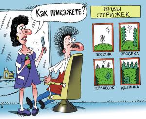 карикатура--стрижка