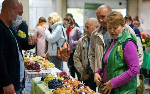 Межрегиональный-форум-виноградарей