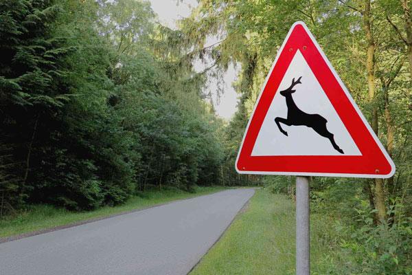 знак-животные