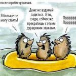 ЁЖИКИ