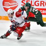 Хоккей_Ирбис