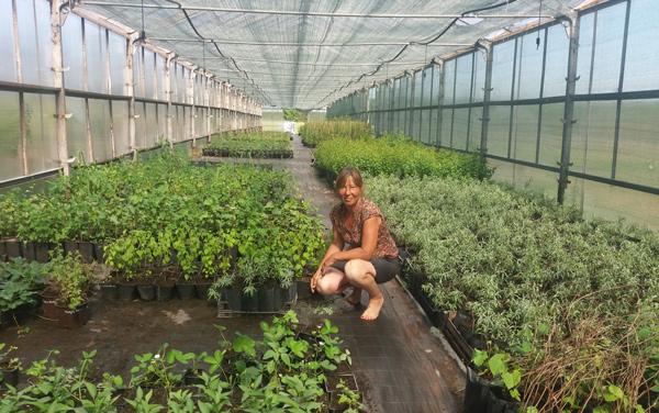 органическое-земледелие