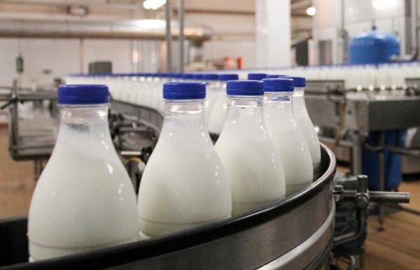 производство-молока